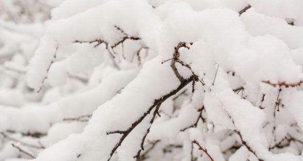 téli takarók